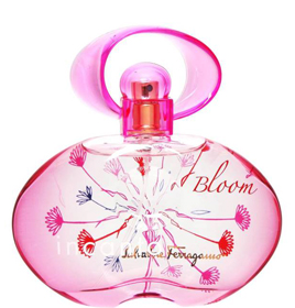 incanto bloom new edition